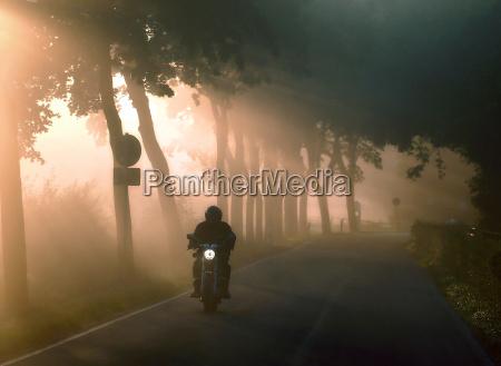 fog, light - 138437