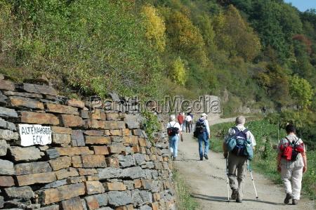 rotweinwanderweg - 144563