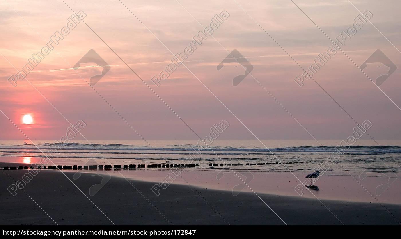 beach, impression - 172847