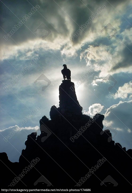 blue, monument, stone, bird, black, swarthy - 174686