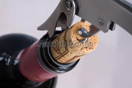 corkscrew - 174844