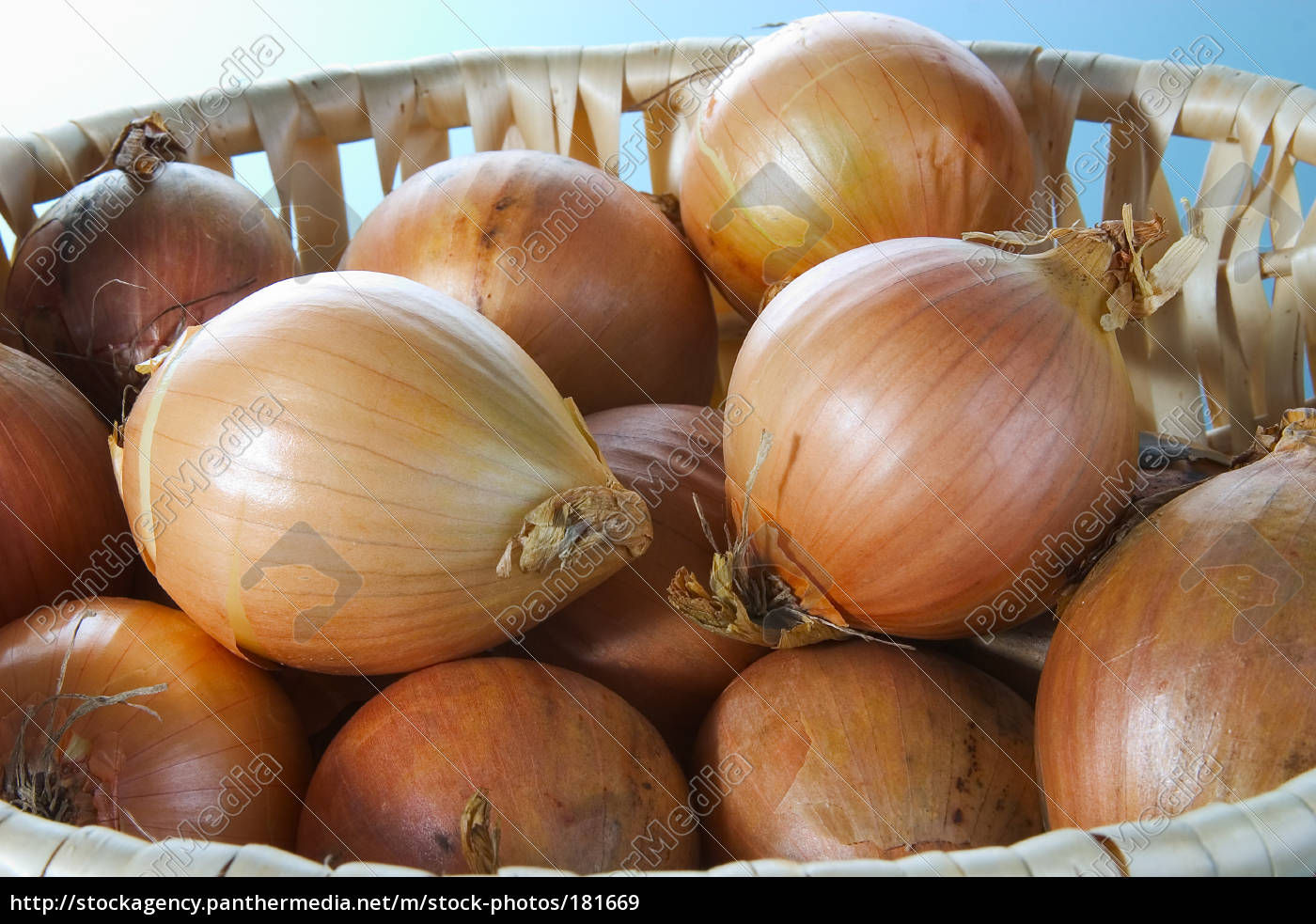 onions, 06 - 181669