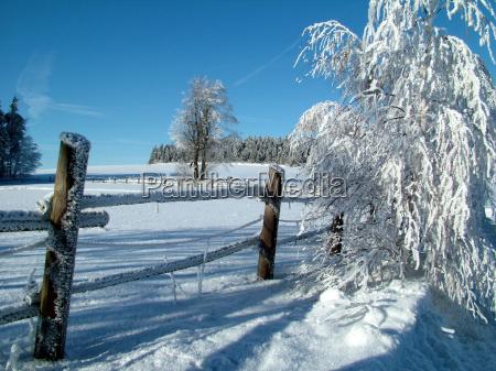 winter, day - 203252