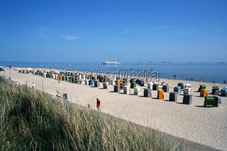 beach, life - 244057