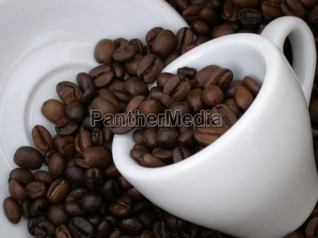 kaffee4
