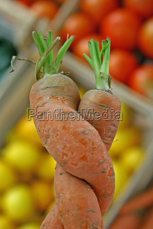 vegetable gobbled carrots carrot orange love