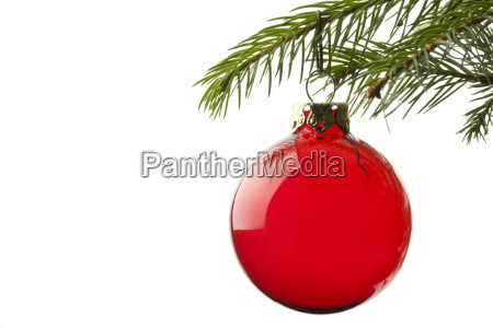 bauble, on, spruce, branch - 1510417