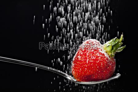puderzucker fruch