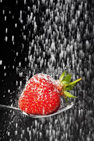 puderzucker faellt auf eine erdbeere