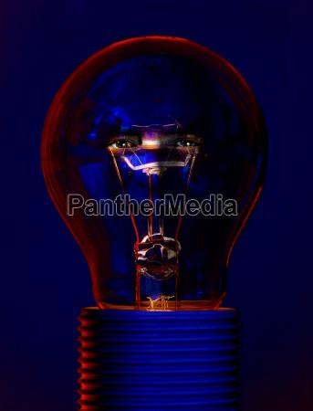 lightbulb with brains