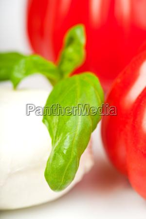 tomaten mozzarella und basilikum insalada