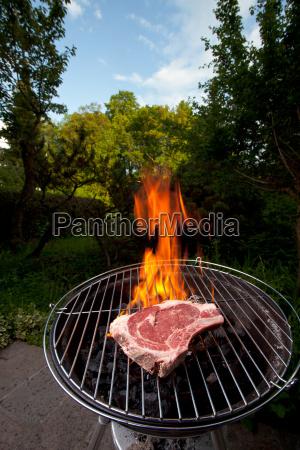 t bone steak auf dem grill