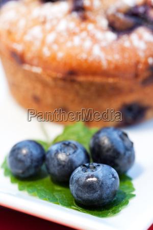blaubeeren und muffin auf einem teller