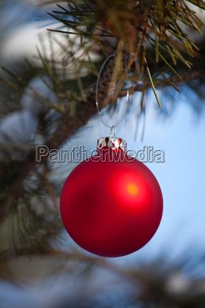 rote christbaumkugel im freien