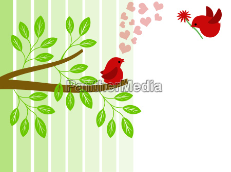 pair of love birds for valentines