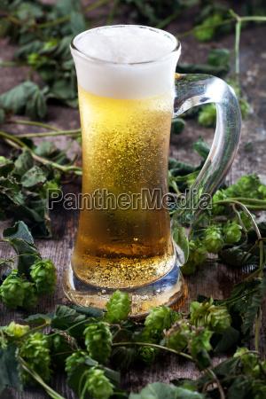 bier und hopfen