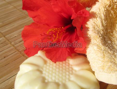 massagebar mit hibiskus