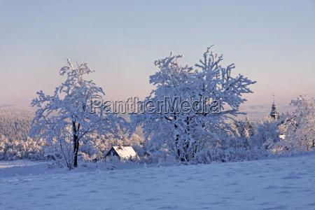 winter eis winterlandschaft vereist schnee landschaft