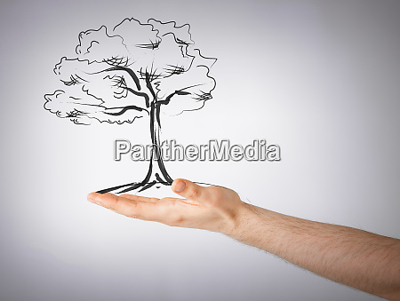 man with small tree in his