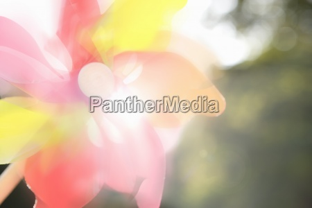 close up of pinwheel lens flare