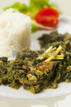 indischer spinatcurry mit basmatireis