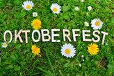 oktoberfest text