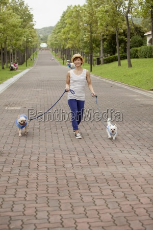 woman walking two dogs on a