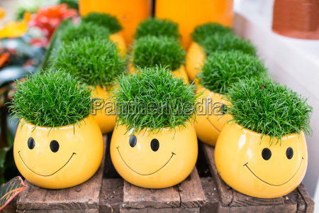 yellow flower pots as smilie with