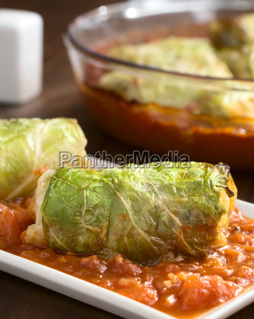 stuffed savoy cabbage on tomato sauce