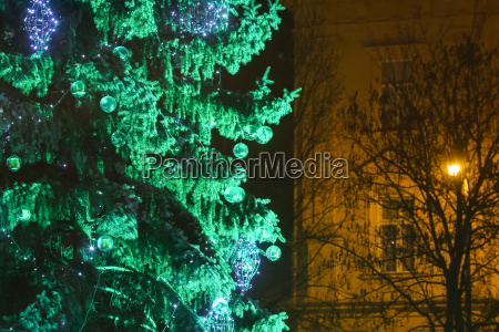 green christmas tree in zagreb