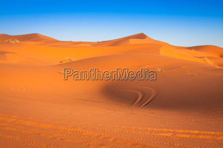 sand dunes in the sahara desertmerzougamorocco