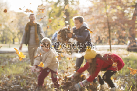 family playing in autumn leaves at
