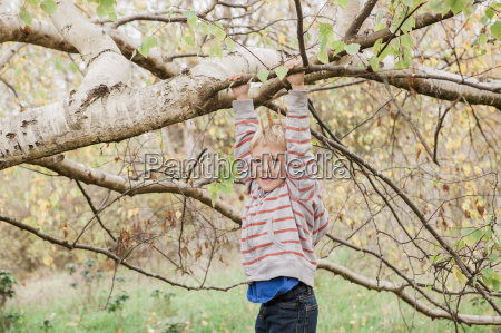 portrait smiling toddler hanging from tree