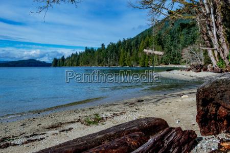 campsite, swing - 17367636