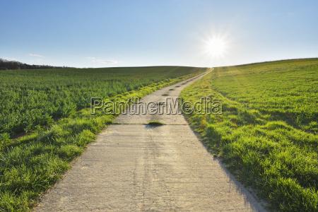 road through field with sun helmstadt