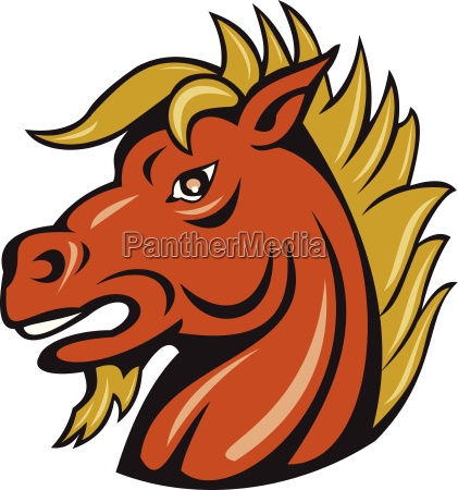 angry stallion head cartoon