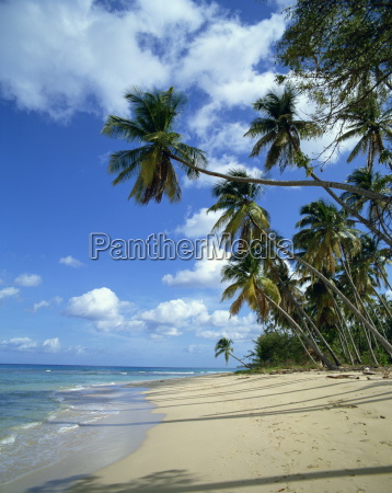 barbados west indies caribbean central america