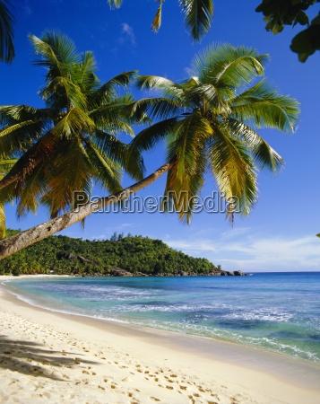 beach anse takamaka mahe island seychelles