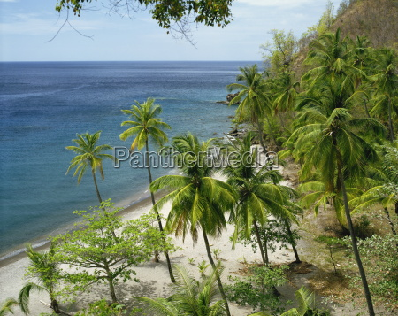 anse chastanet near soufriere st lucia