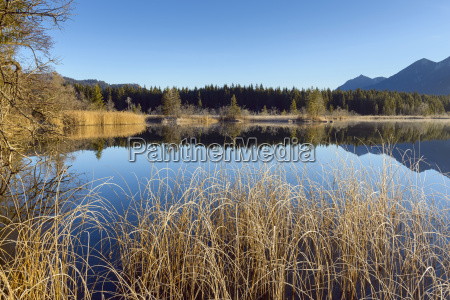 landscape reflected in lake barmsee krun