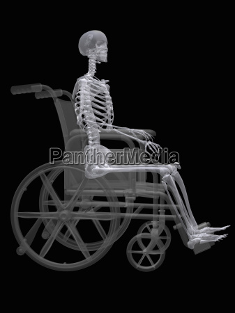 illustration of a skeleton seated in