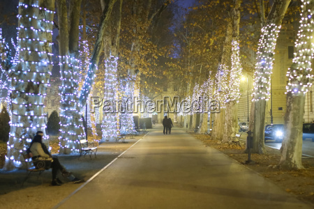 illuminated, plane, tree, alley - 19864292