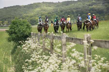 group of riders on racehorses grouped