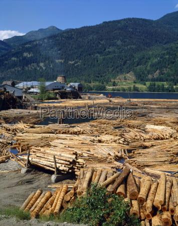 lumber mill near chase british columbia