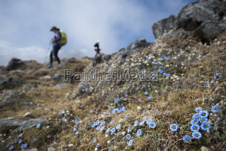 trekking down towards ghopte from the