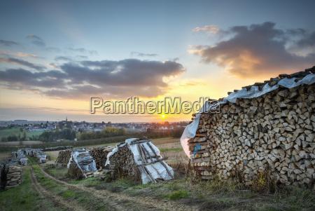 wood piles near schoenenbourg bas rhin