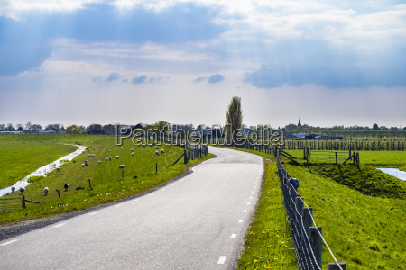 winding rural road along the zuiderdijk