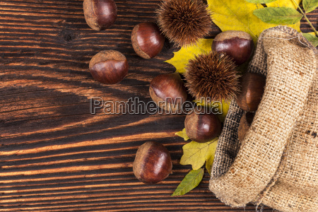 chestnuts in burlap bag from above