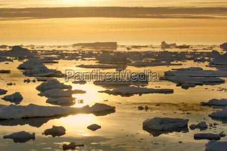 icebergs at sunrise antarctic sound antarctica