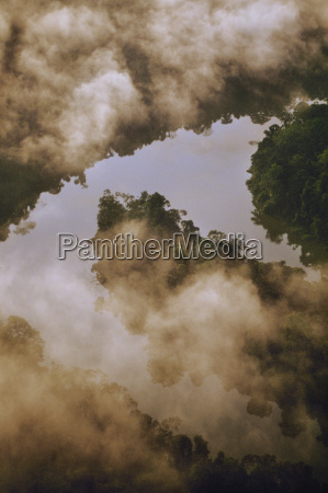 morning mist over lowland rainforest with